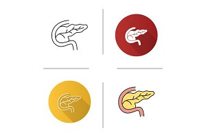 Pancreas and duodenum icon