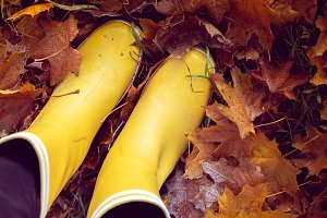 autumn still life with rubber boots