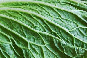 vegetable backgrounds