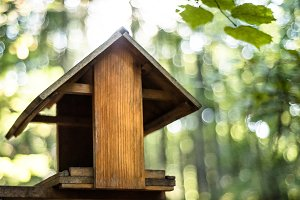 Birdhouse with blurred nature in the