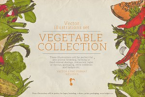 Vegetable collection 1