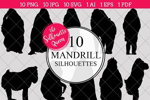 Mandrill Silhouette Vector Graphics