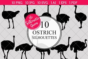 Ostrich Silhouette Vector Graphics