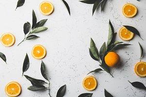 Orange slices and fresh orange tree