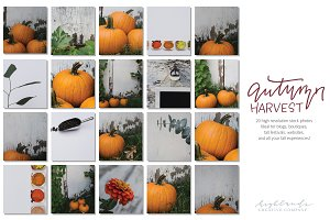 Autumn Harvest Bundle | Festivals