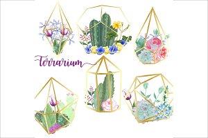 Watercolor Terrarium Clipart