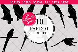 Parrot Silhouette Vector Graphics