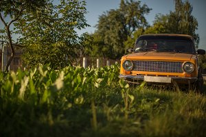 Old vintage car in the garden
