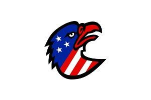 American Flag Inside Eagle Mascot