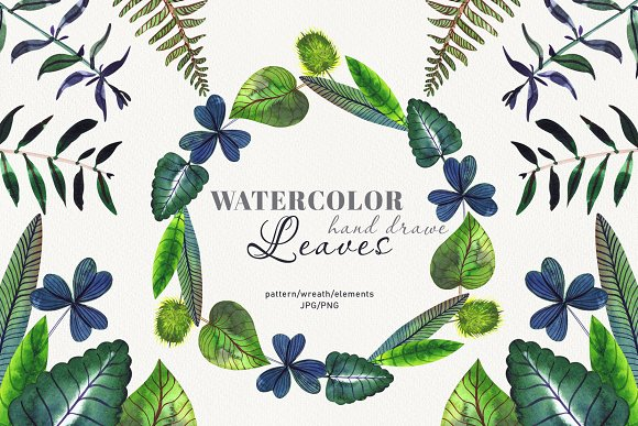 Botanical watercolor leaves set