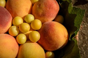 Juicy peaches and cherry plums with