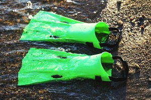 Green flippers fins in the sand