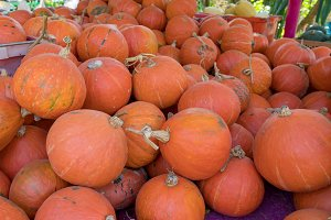 pumpkin for sell at fruit