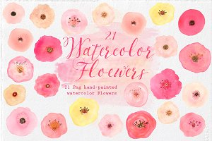 21 Watercolor hand-painted Flowers