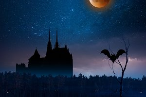Night landscape with stars and blood
