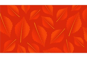 Autumn orange background with leaves