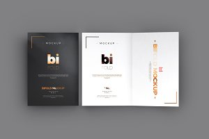 Bi-Fold A5 Brochure / Mock-up 2