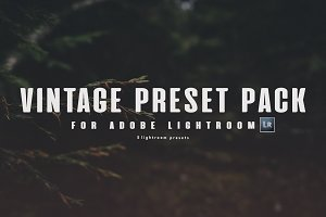 5 VINTAGE LIGHTROOM PRESETS