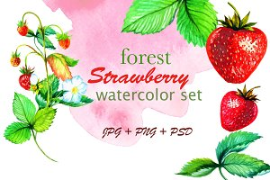 Forest strawberry