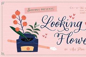 Looking Flowers