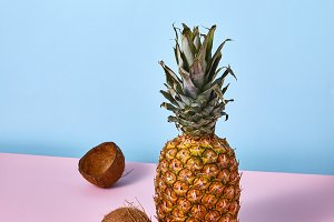 Pineapple, mango and coconut on the