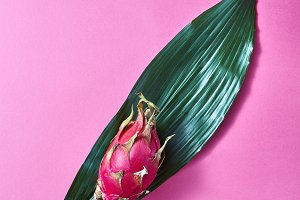 asian pink dragon fruit on a green