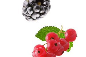 Flying fresh berries isolated on