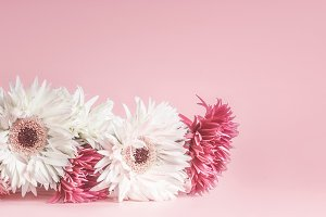 Pink floral banner or template