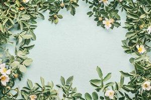 Dog-roses frame layout