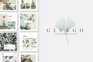 Ginkgo Instagram Post Templates