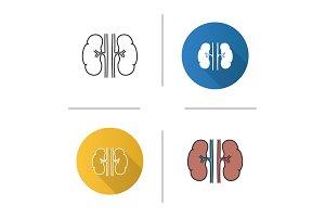Human kidneys icon
