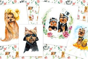 Yorkshire terriers in suits
