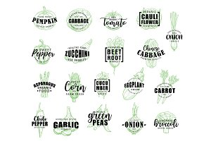 Vegetable hand drawn lettering icons