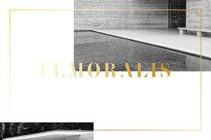 Femoralis // elegant stencil font