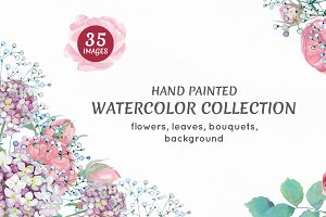 Floral watercolors collection