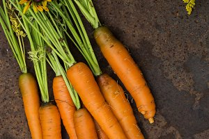 fresh juicy carrots bunch on old