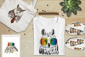 Fashion owls set