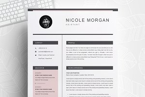 Clean Minimal Resume / CV Template