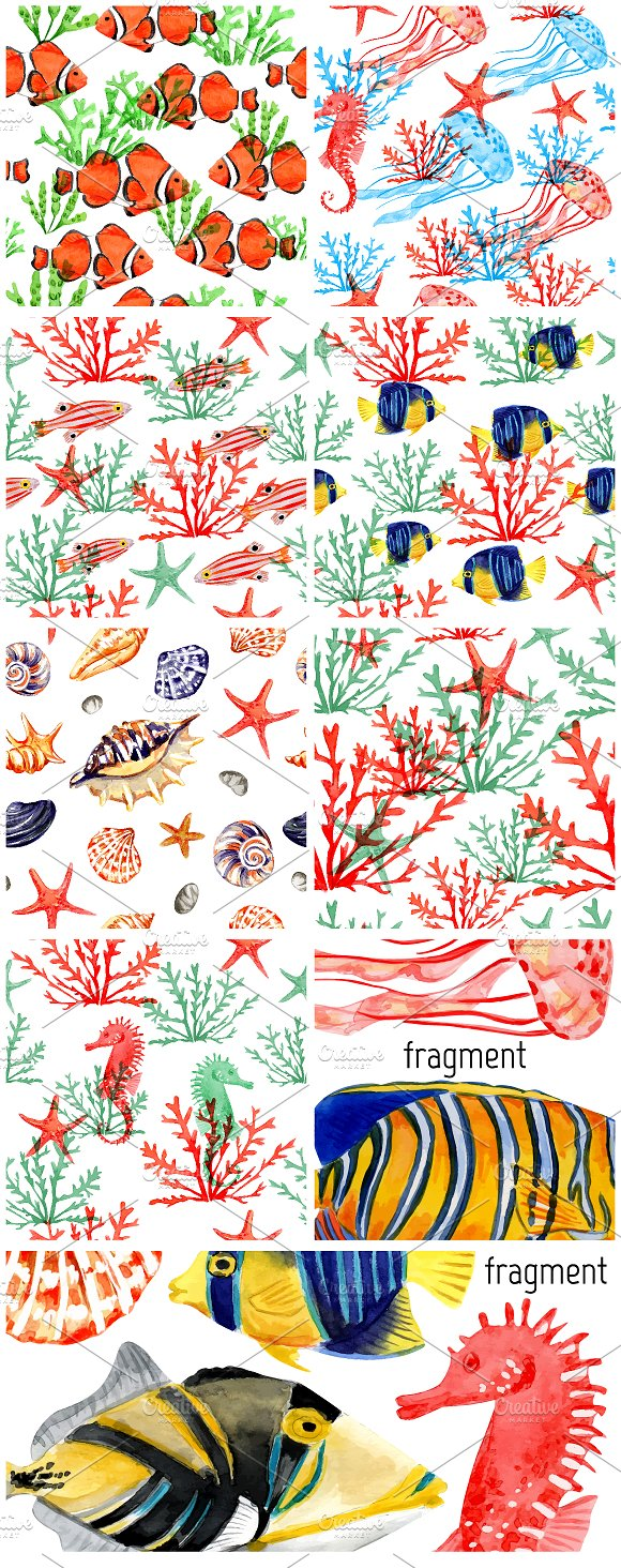 Tropical fish and seashells in Patterns - product preview 4