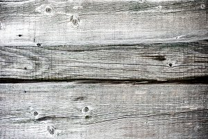 Rough old gray wood texture