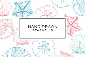 Hand Drawn Seashell Clipart