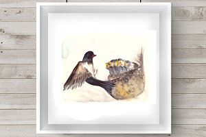 Watercolor Mother & Baby - Swallows