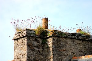 Stone chimney grass blue sky