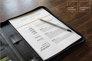 4 Page Resume Template | Word and In