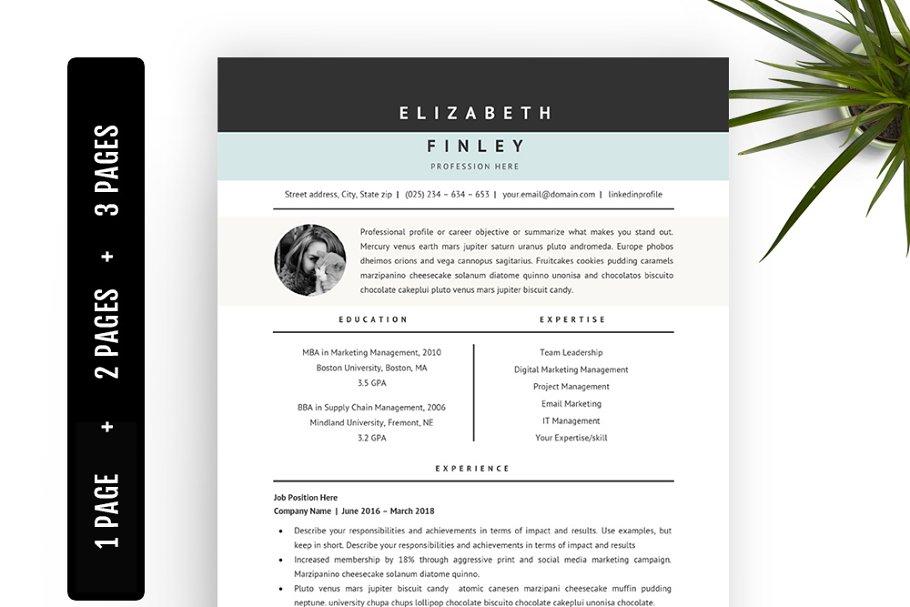 Professional Resume Template 40 Resume Templates Creative