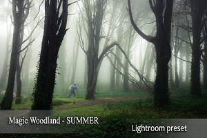 Magic woodland-SUMMER for Lightroom