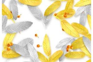 Fall Foliage. Autumn background