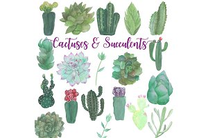 Hand Drawn Watercolor Cactuses