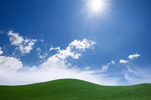 Green grass lawn and blue sunny sky