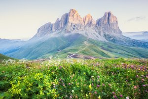 Alpine mountain summer view